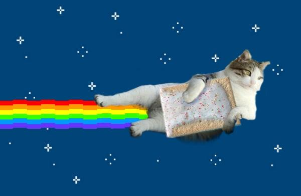 Tombili like nyan cat