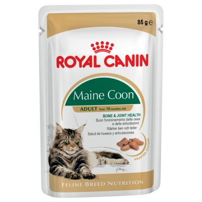 croquette royal canin chaton maine coon